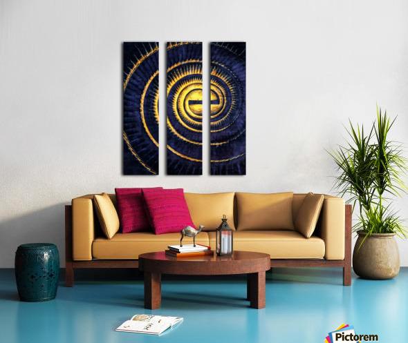 Reflections in a Golden Eye Split Canvas print