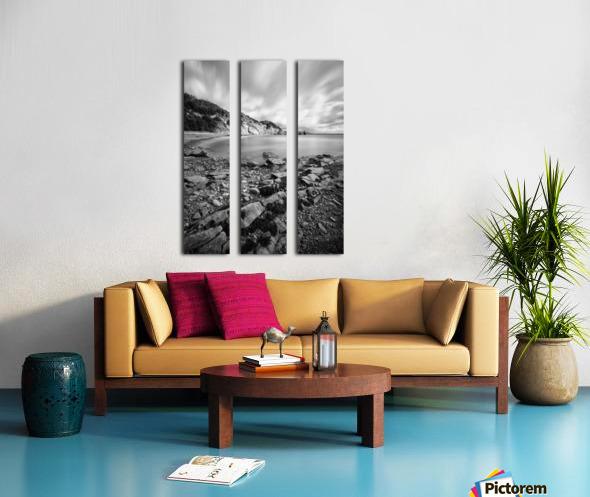 Halcyon Split Canvas print