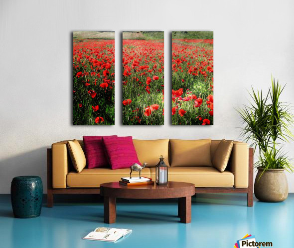 Rolling Fields with Poppies Split Canvas print
