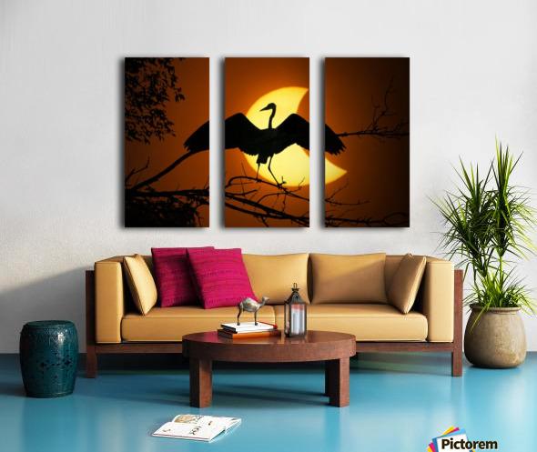 Egret Eclipse Split Canvas print
