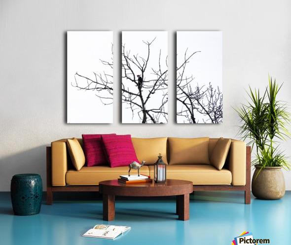 Pileated Woodpecker - Large Split Canvas print