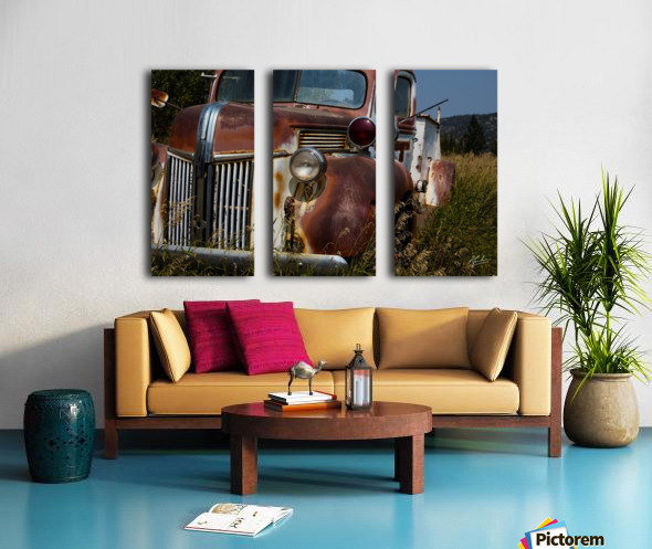 Ford Truck  Split Canvas print