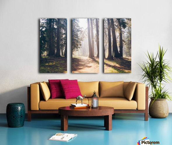 HDstudio.us 300 Split Canvas print