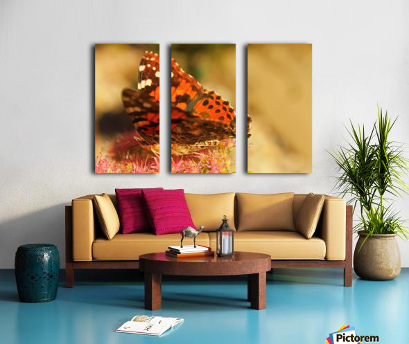Un Papillon Split Canvas print