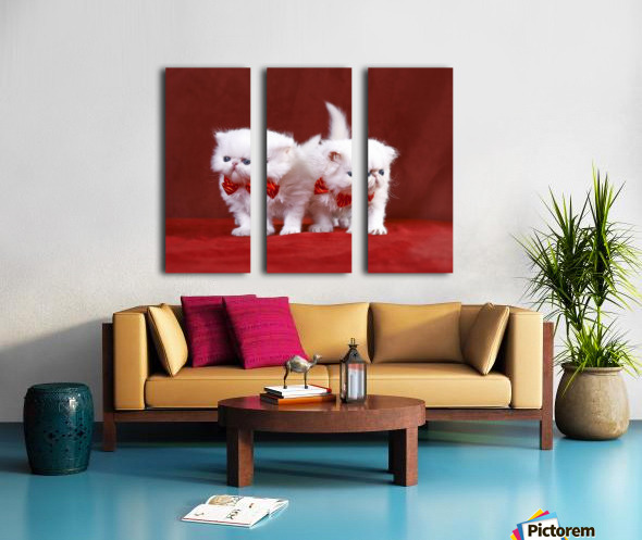 White Persian Kittens with bow ties Split Canvas print
