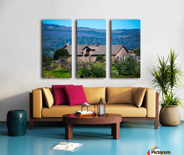 20190316 DSC_0254 Split Canvas print