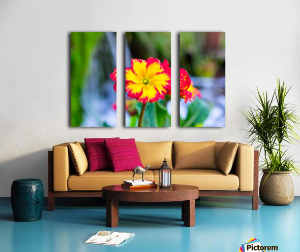 20190316 DSC_0217 2 Split Canvas print