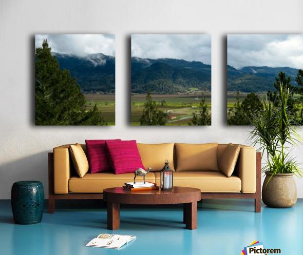 20190209 IMG_3182 Split Canvas print