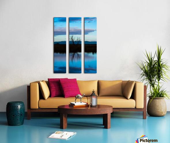 20190228 DSC_0081 3 Split Canvas print