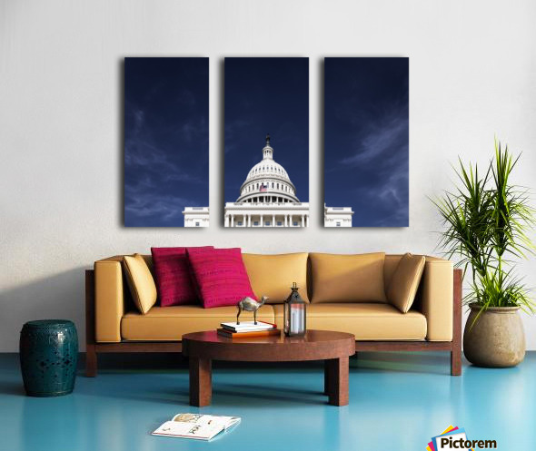 United States Congress Split Canvas print