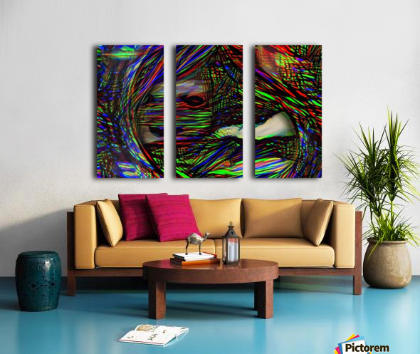 Abstract Face Split Canvas print