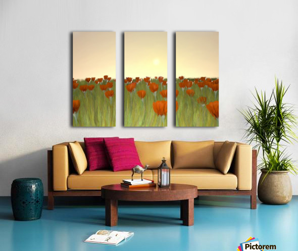 RED POPPIES at Sunset Split Canvas print