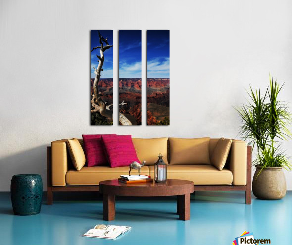 Grand Canyon framed by tree Split Canvas print
