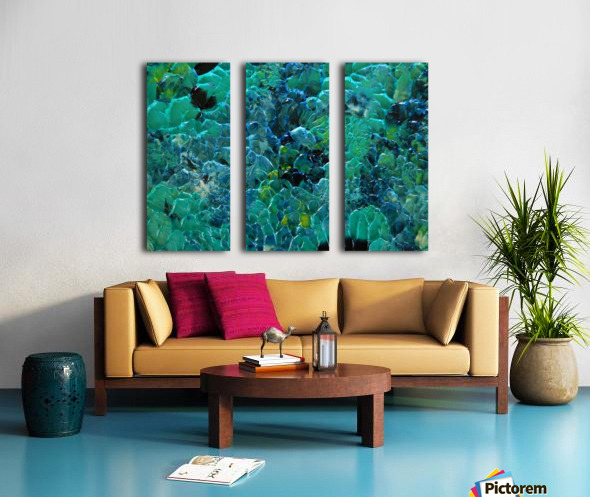 CORAL Split Canvas print