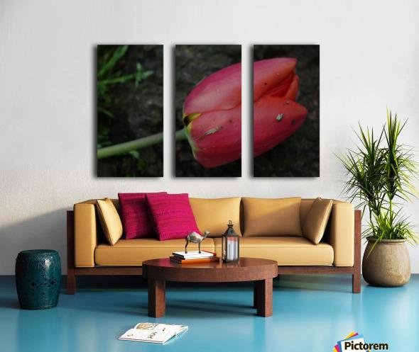 Fallen Beauty 2 Split Canvas print