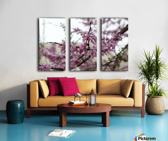 Blooming Split Canvas print