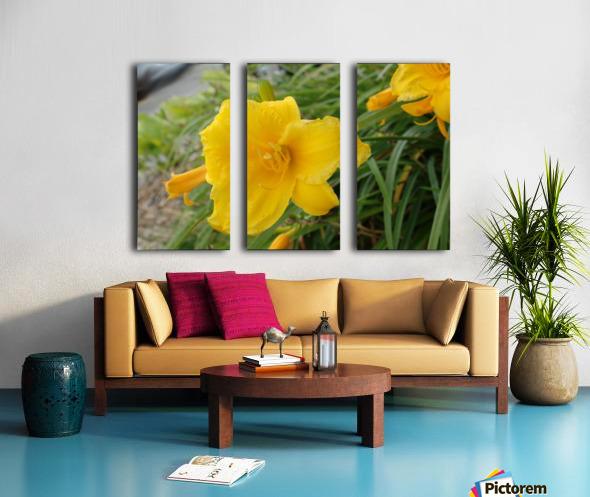 Yellow Lilly Split Canvas print