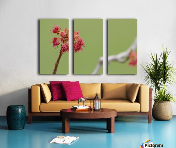 Blooming 2 Split Canvas print