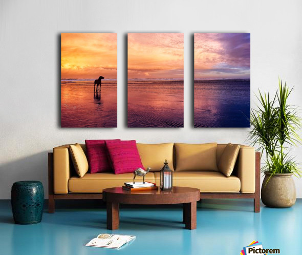 Timeless. Split Canvas print