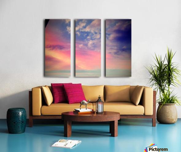 IMG_3800 Split Canvas print