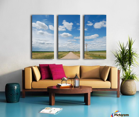 Country Road Split Canvas print