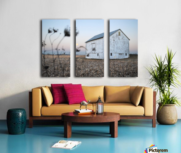 The Old Barn Split Canvas print