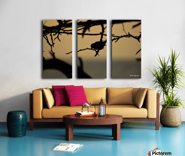 Branch Split Canvas print