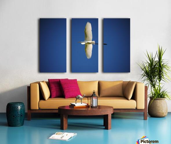 Egret Sailing Above Split Canvas print