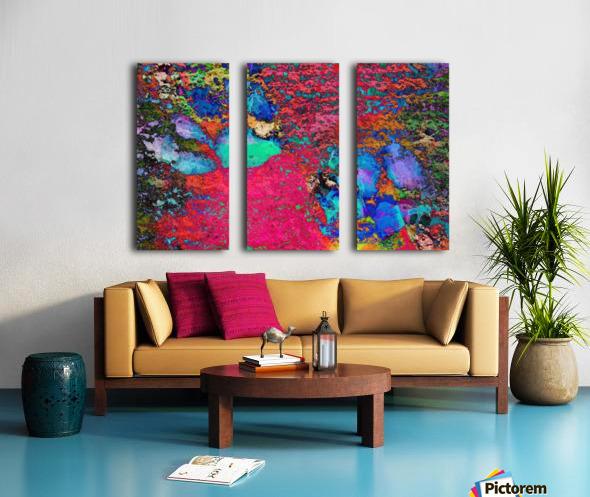 Paw Prints Colour Explosion Split Canvas print