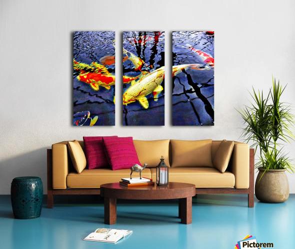 Koi Carp Huddle Split Canvas print