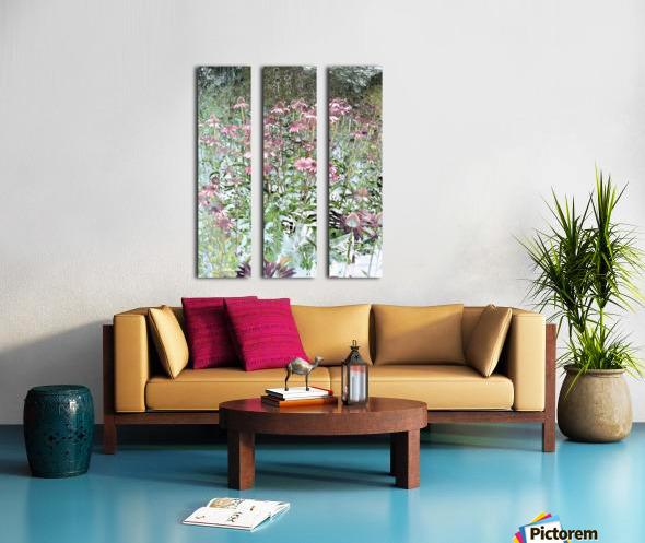 Echinacea Split Canvas print