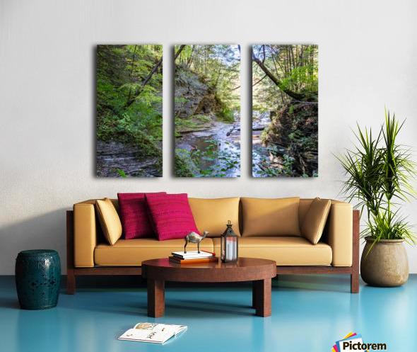 Eagle Cliff Falls 19 Split Canvas print