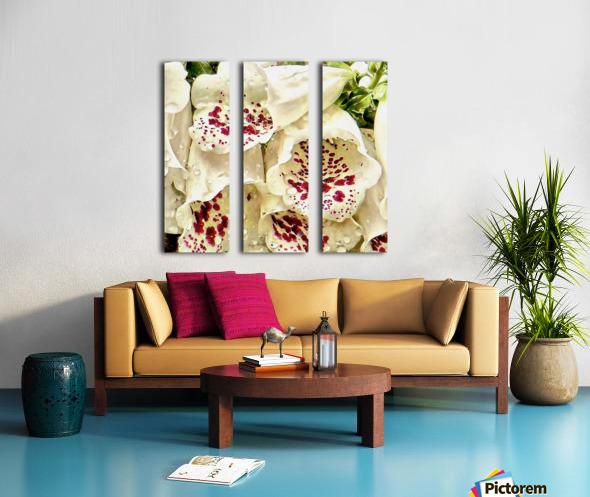White Foxgloves with Raindrops Split Canvas print