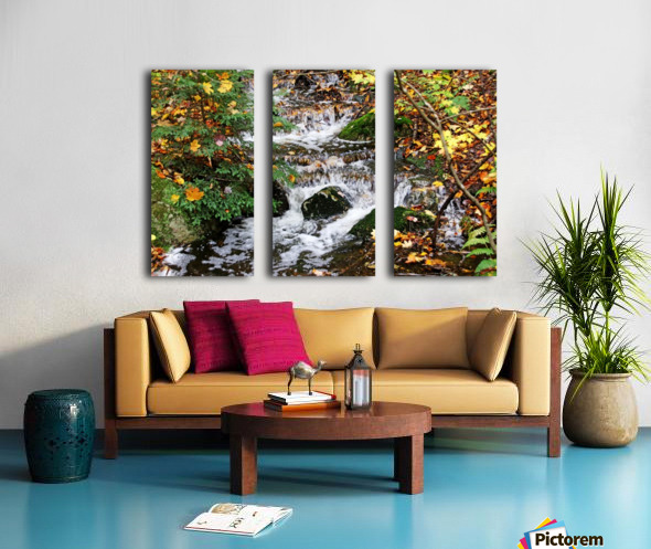 Autumn Flow Split Canvas print