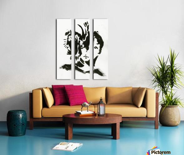 Keen Eye Split Canvas print