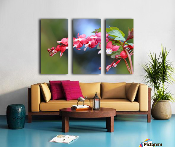 Natures Red Hearts Split Canvas print