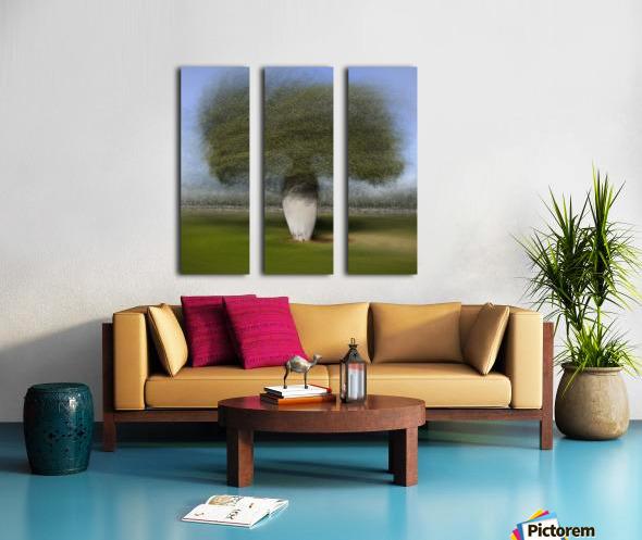 Ceiba speciosa Split Canvas print