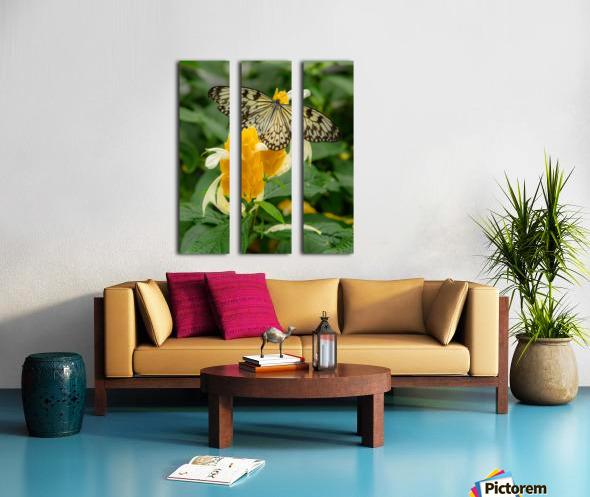 Papillon Rice paper Split Canvas print