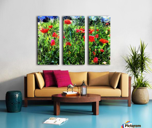 Green Pasture With Red Poppies Split Canvas print