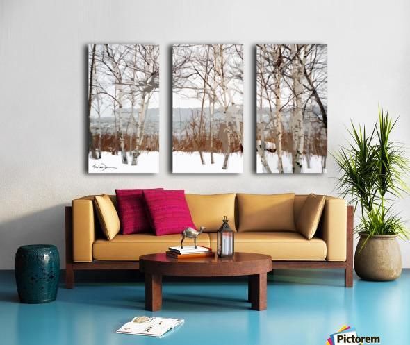 Canal Lachine Split Canvas print