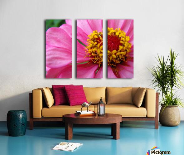 Unknown in Pink Split Canvas print