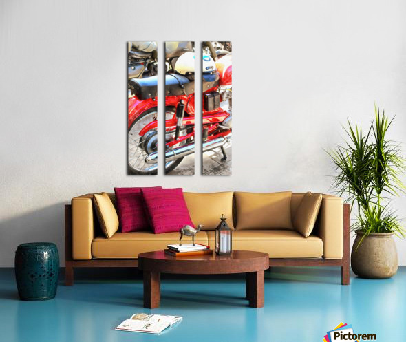 Neatly Parked Split Canvas print