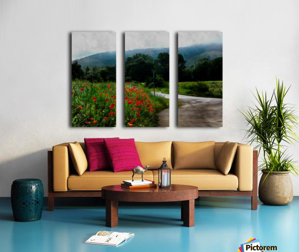 The Poppy Road to Happiness Split Canvas print
