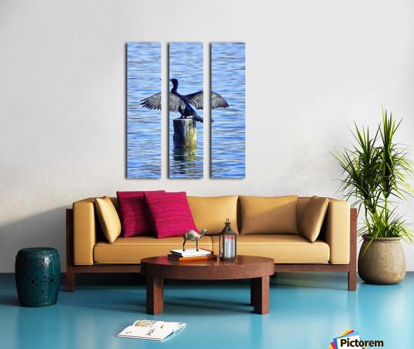 Cormorant Drying  His Wings Split Canvas print