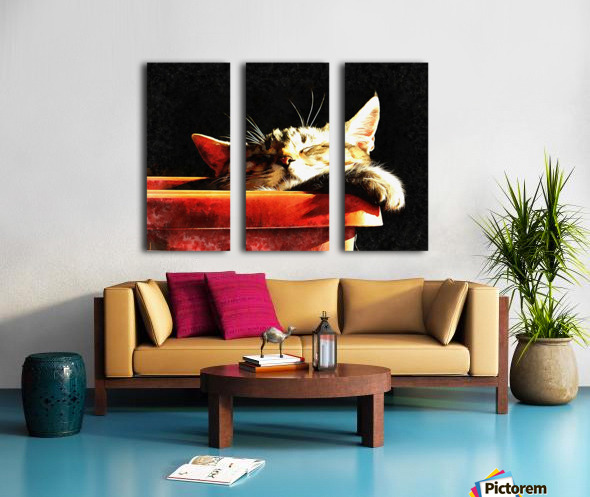 Wake Me When It Is Dinner Time Split Canvas print