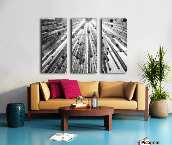bamboo falling Split Canvas print