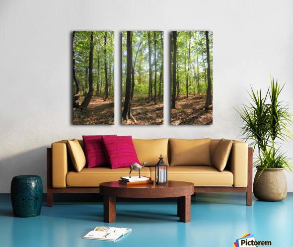 Landscape (51) Split Canvas print