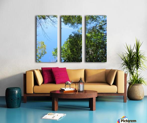 Landscape (200) Split Canvas print