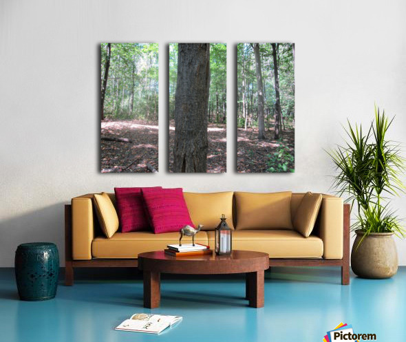 Landscape (166) Split Canvas print