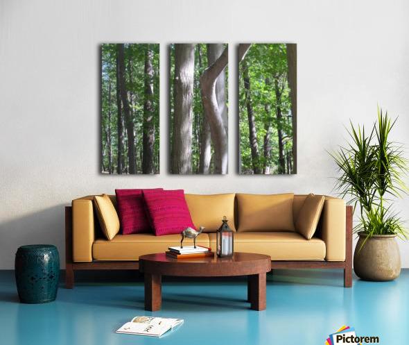 Landscape (267) Split Canvas print